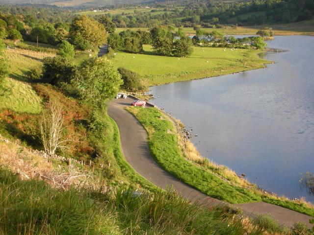 Sligo. Sheep grazing beside Glencar Lough. - geograph.org.uk - 1038089