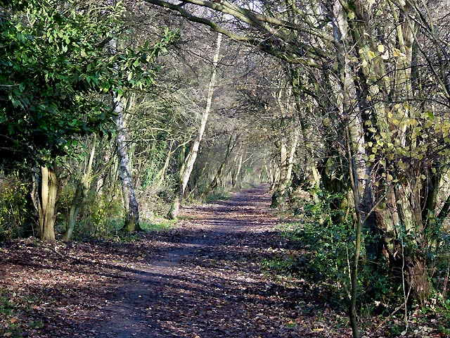 Smestow Valley Nature Walk, Wolverhampton - geograph.org.uk - 623979