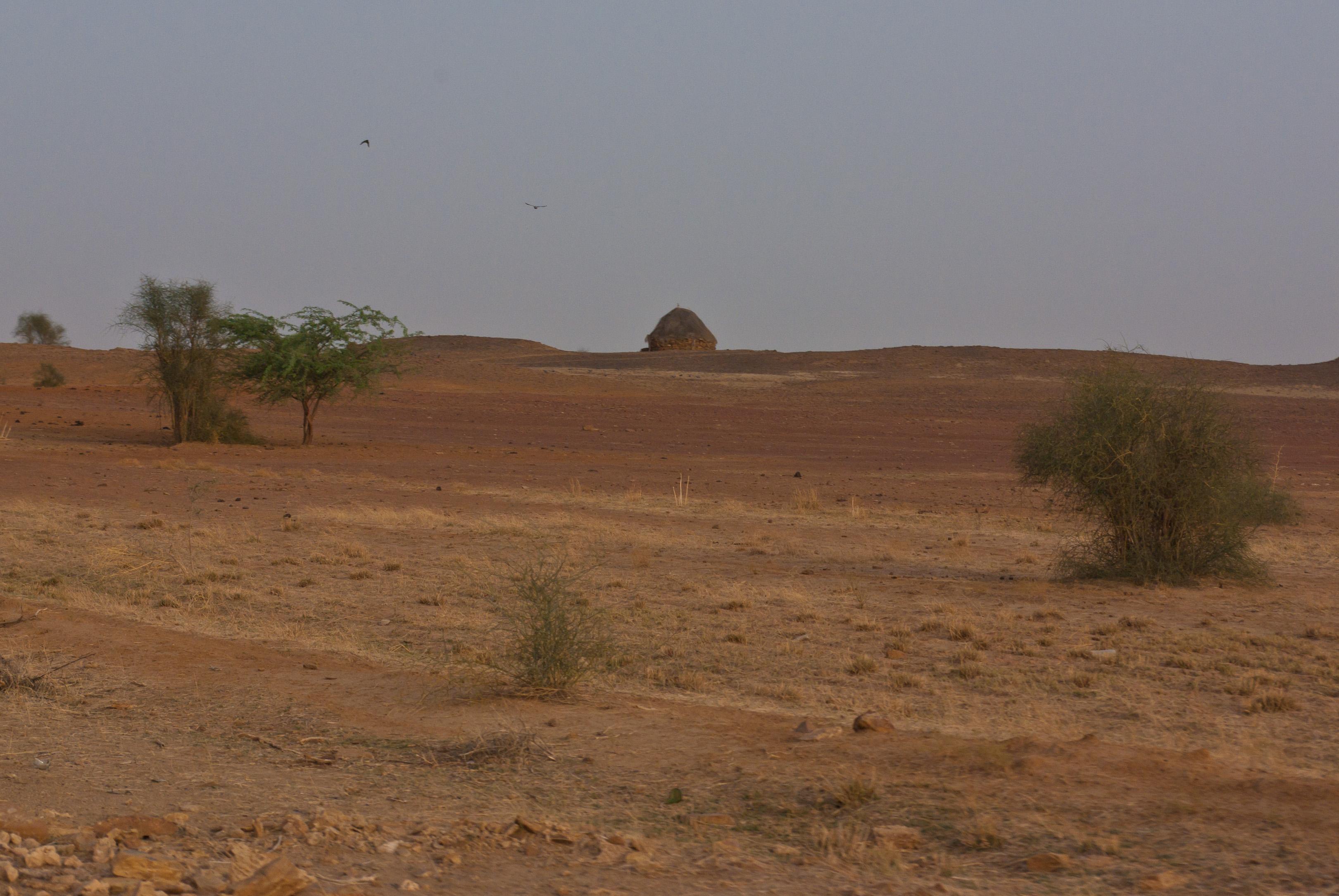 File:Thar Desert 02.jpg - Wikimedia Commons