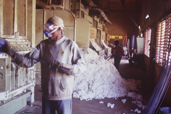 Ouvrier dans une usine de coton