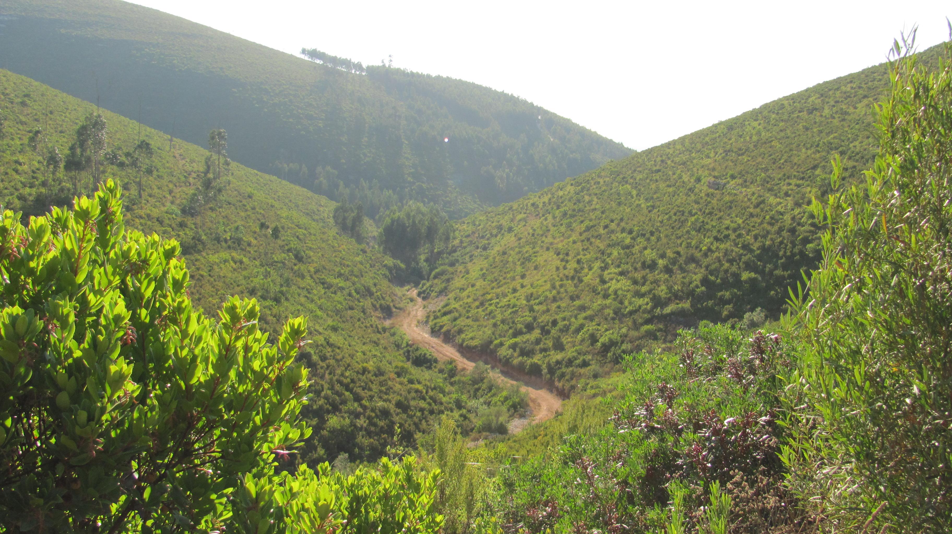 Http Commons Wikimedia Org Wiki File Vale Senhora Do Monte Jpg