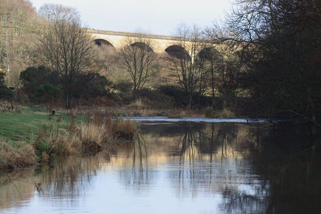 Viaduct Over the River Derwent - geograph.org.uk - 630736