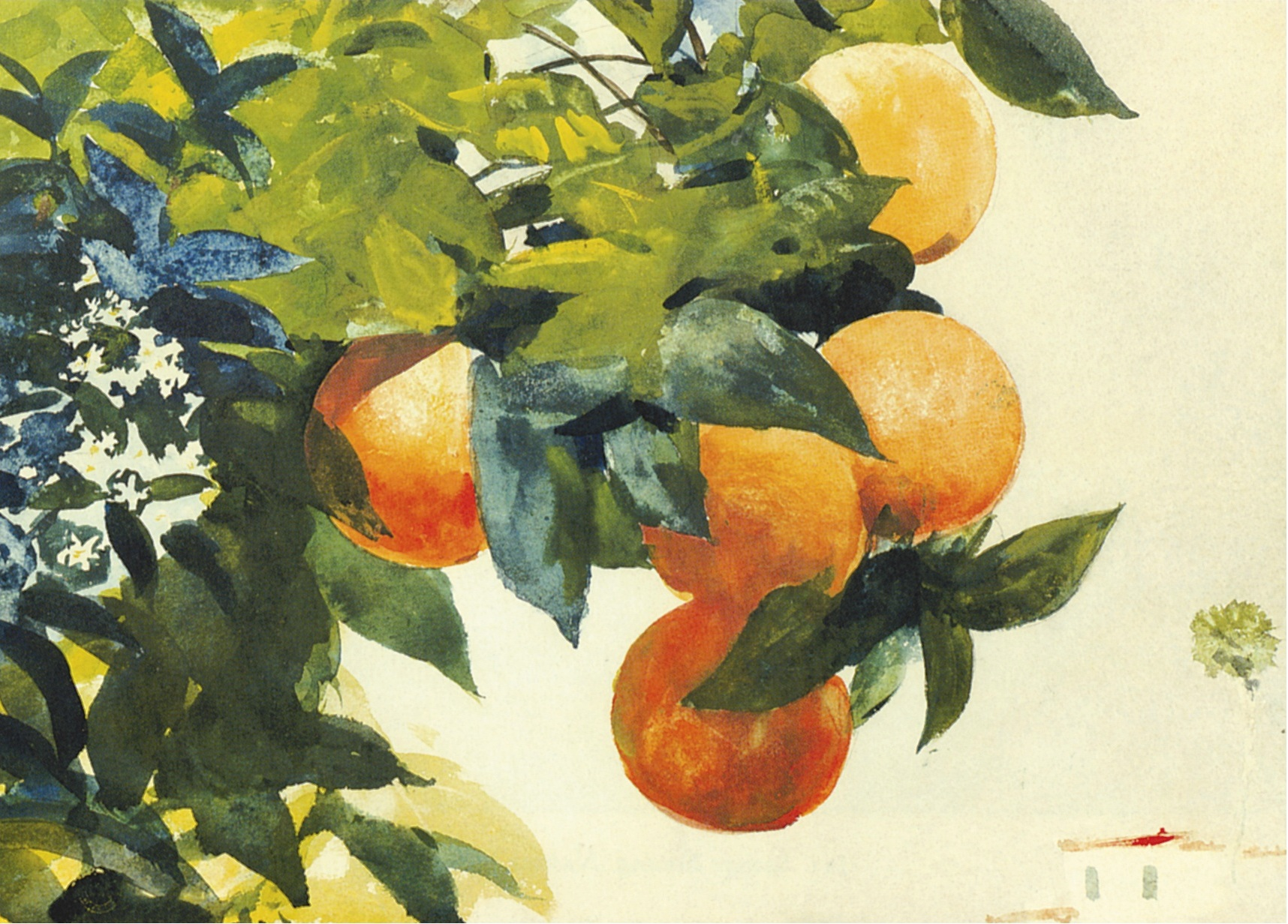 File Winslow Homer Oranges On A Branch Jpg Wikimedia Commons