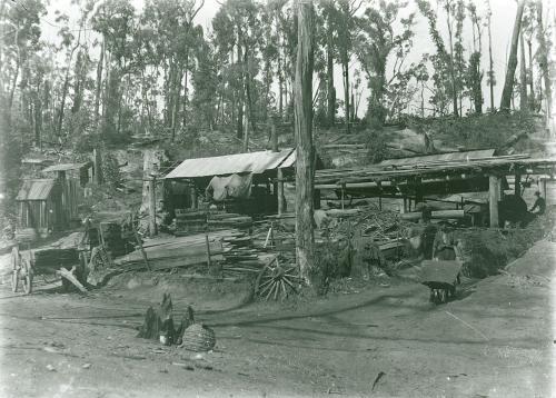 File:Yinnar South Grants Saw Mill 1908.jpg