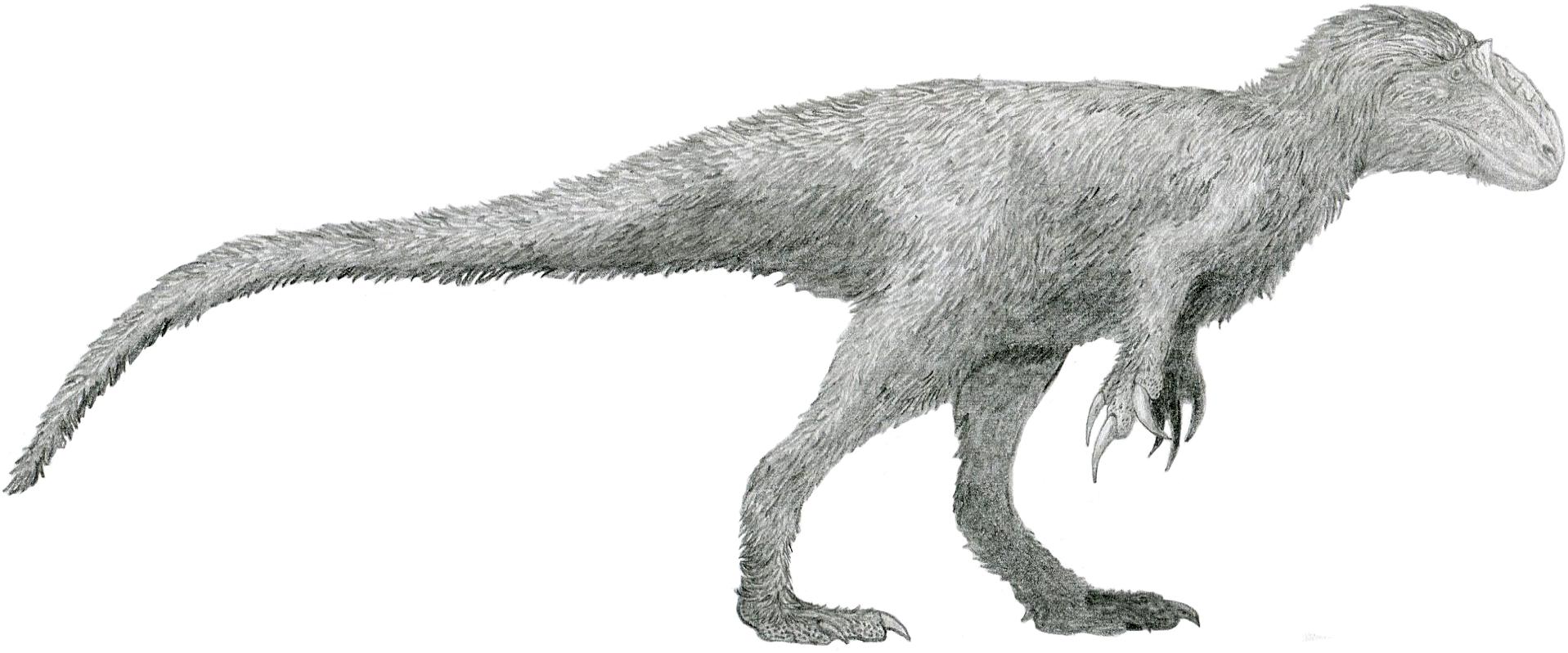 Image result for yutyrannus