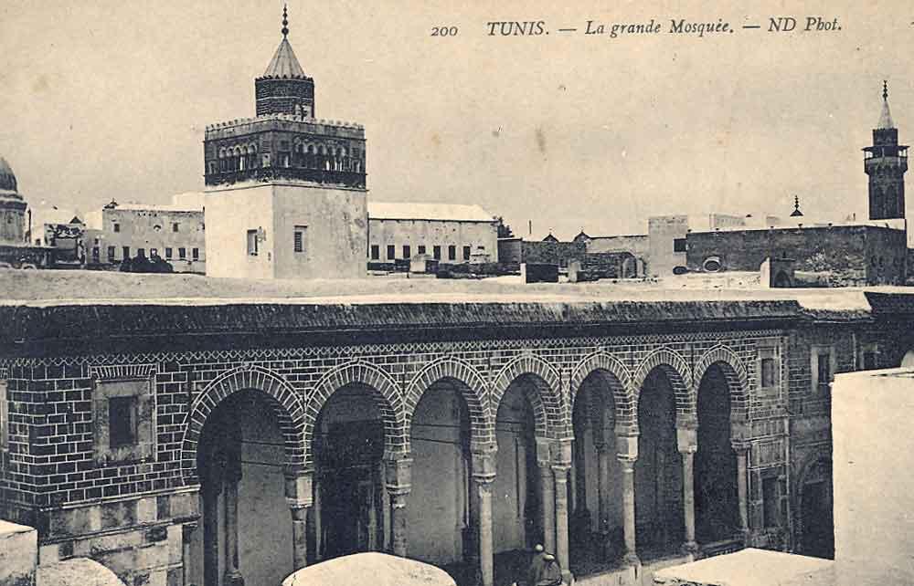 Zitouna_1880.jpg