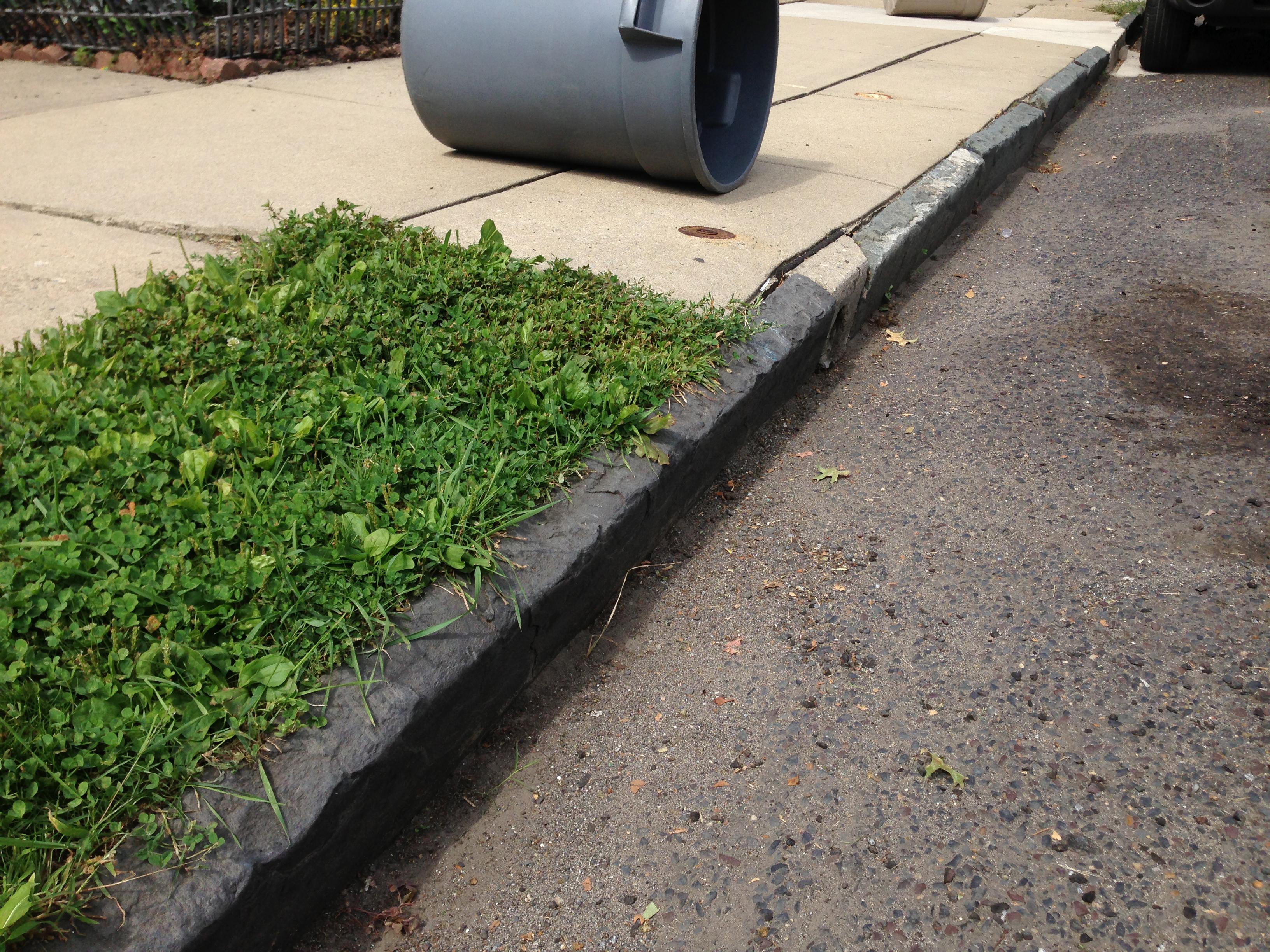 File 2014 08 30 11 27 14 curb stone along heil avenue in for Bordillos jardin