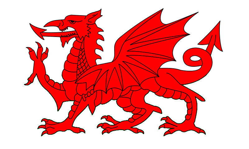 Image result for welsh dragon
