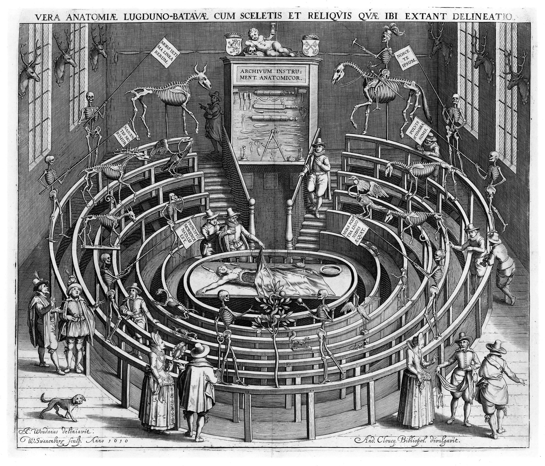 The Anatomy of Art: The History of Anatomy - Anatomical Theatre