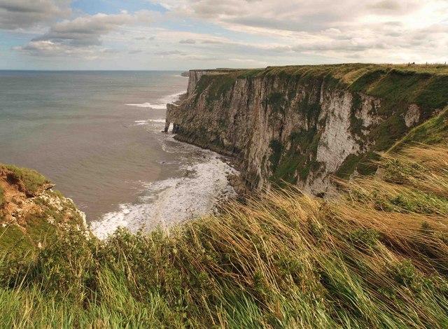 Bempton cliffs - geograph.org.uk - 1474478