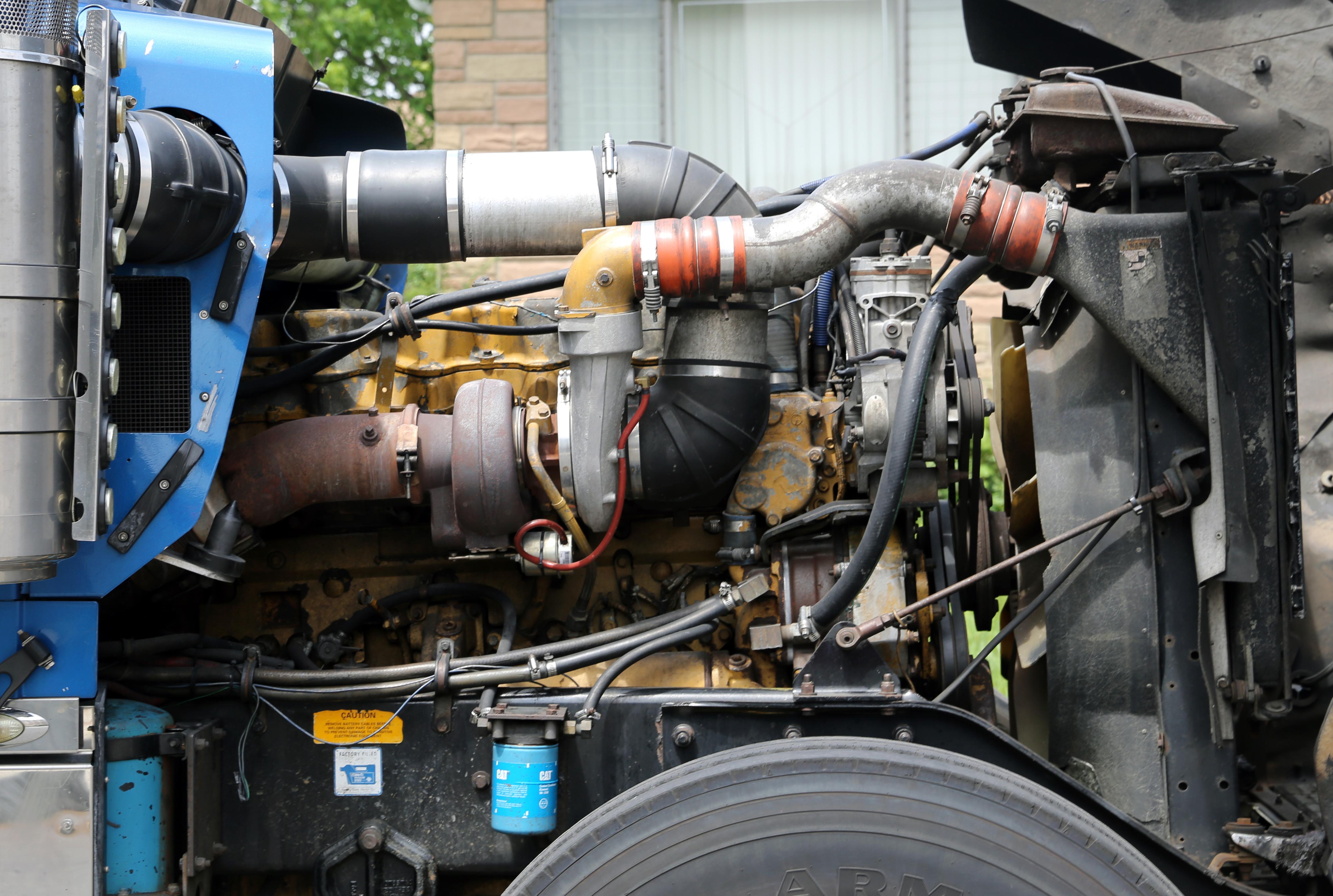 Diesel Power Cat