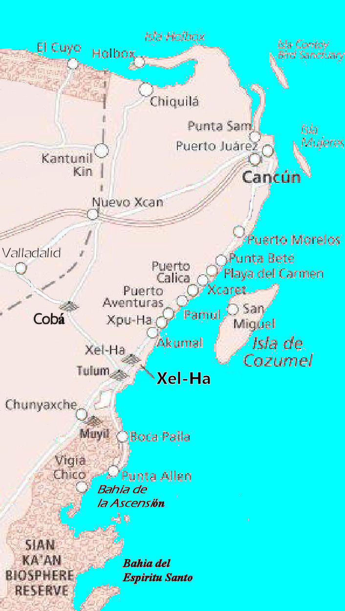 File:coba-xelha-cozumel-cancan