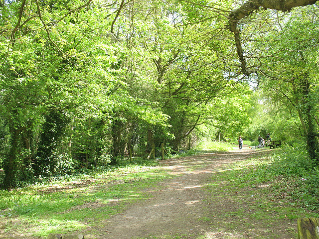 Cole Green picnic area - geograph.org.uk - 1330646