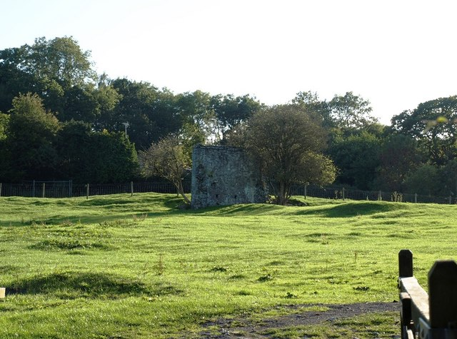 Field of Palace Farm with remains of the Bishops Palace (geograph 3701590)