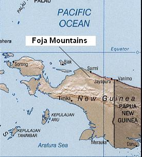 Foja Mountains.JPG