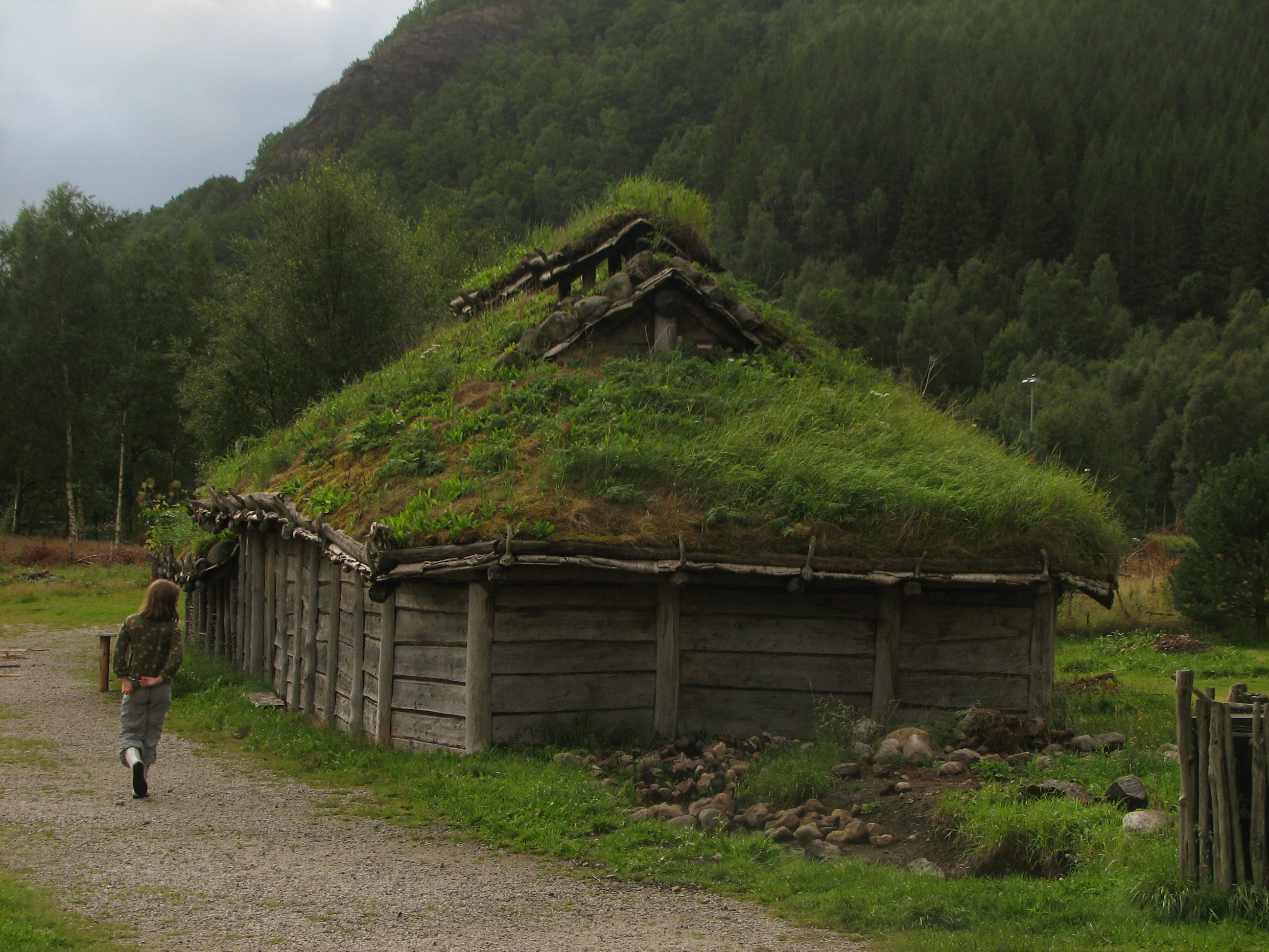 Viking Houses Pictures