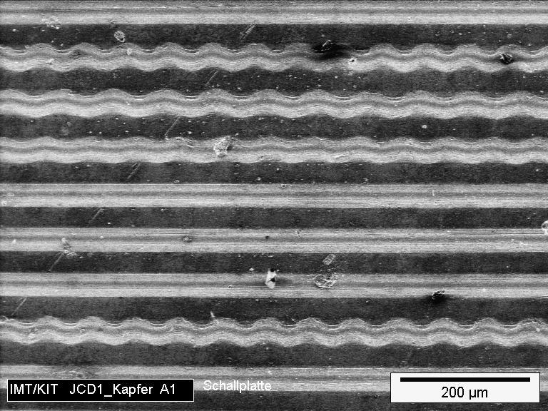Langspielplatte unter dem Rasterelektronenmikroskop