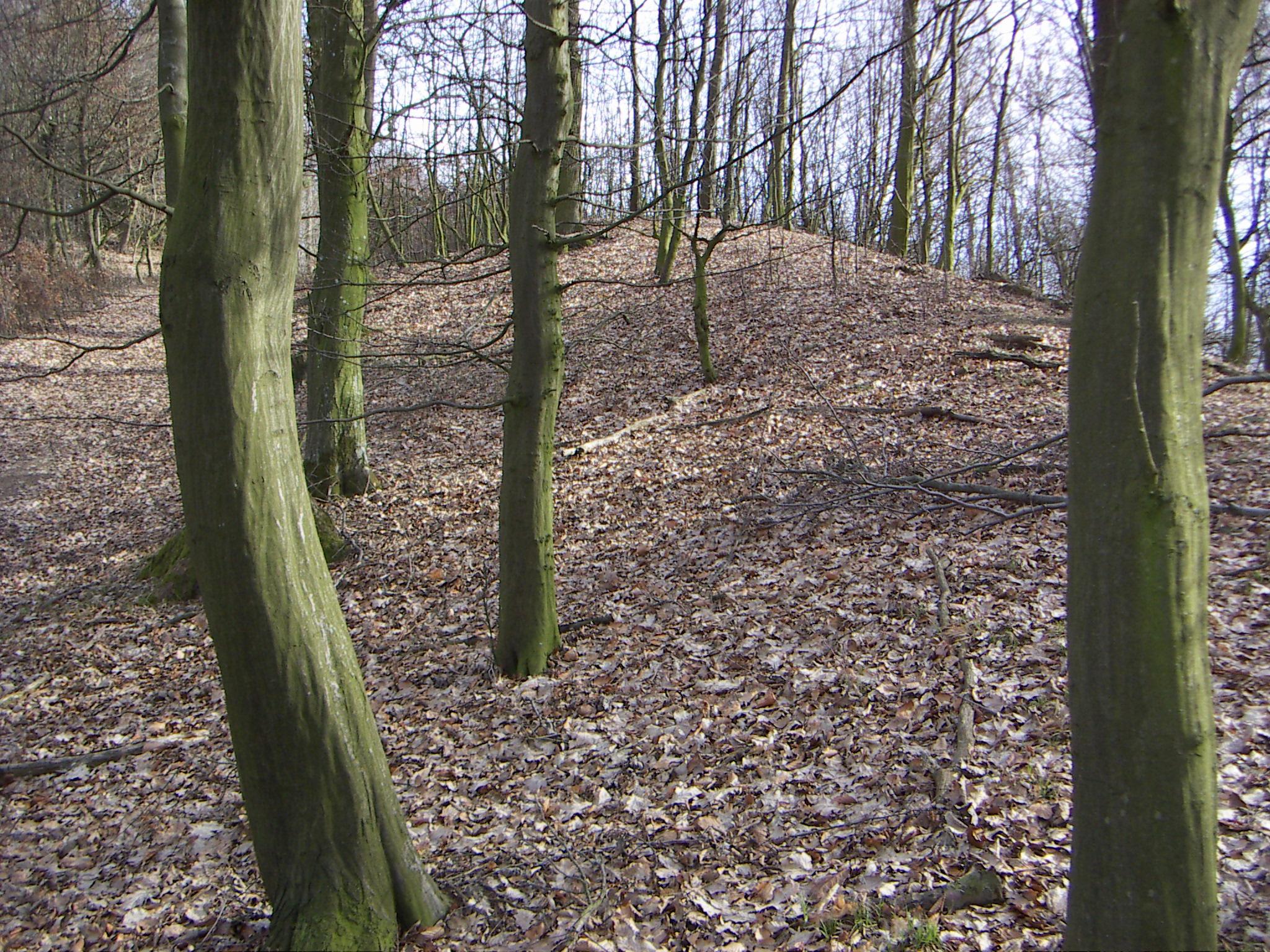 file luftenberg ringwall jpg wikimedia commons