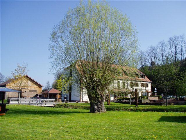 Mühlenmuseum in Volmunster (Elsass)