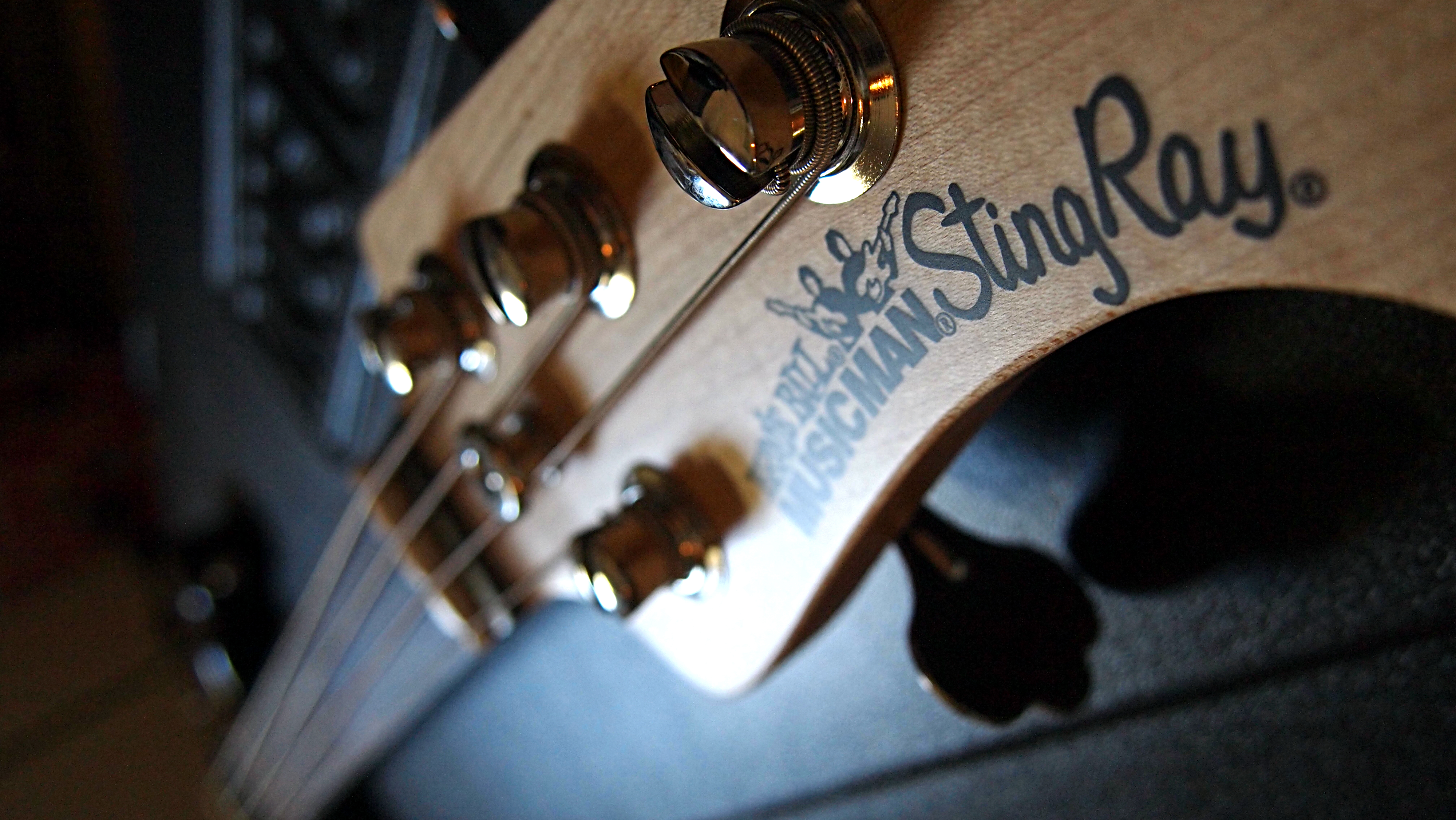 ernie ball music man sting ray solid bass guitars pinterest