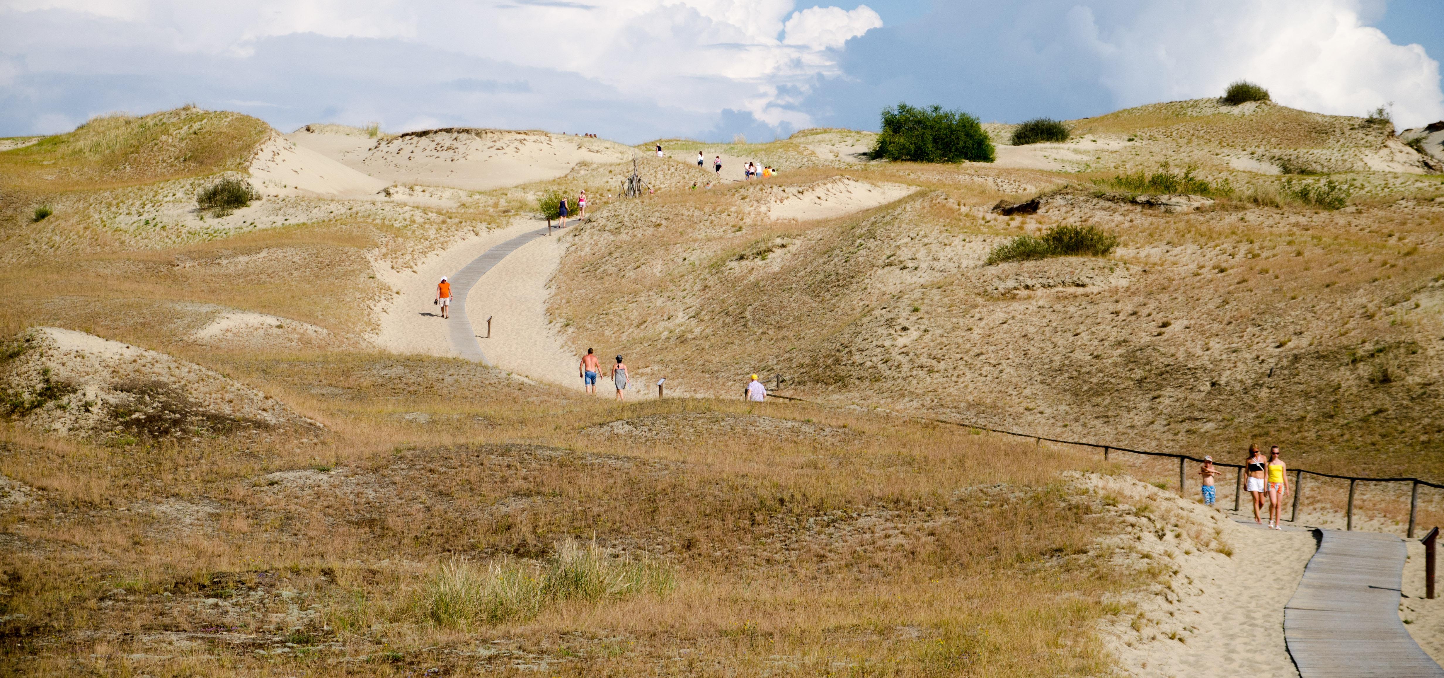 Bukit pasir dari Curonian Spit dekat Nida, yang merupakan bukit pasir melayang tertinggi di Eropa (Situs Warisan Dunia UNESCO).