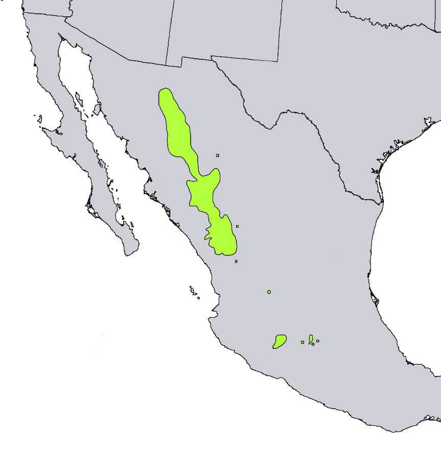 sierra madre occidental map