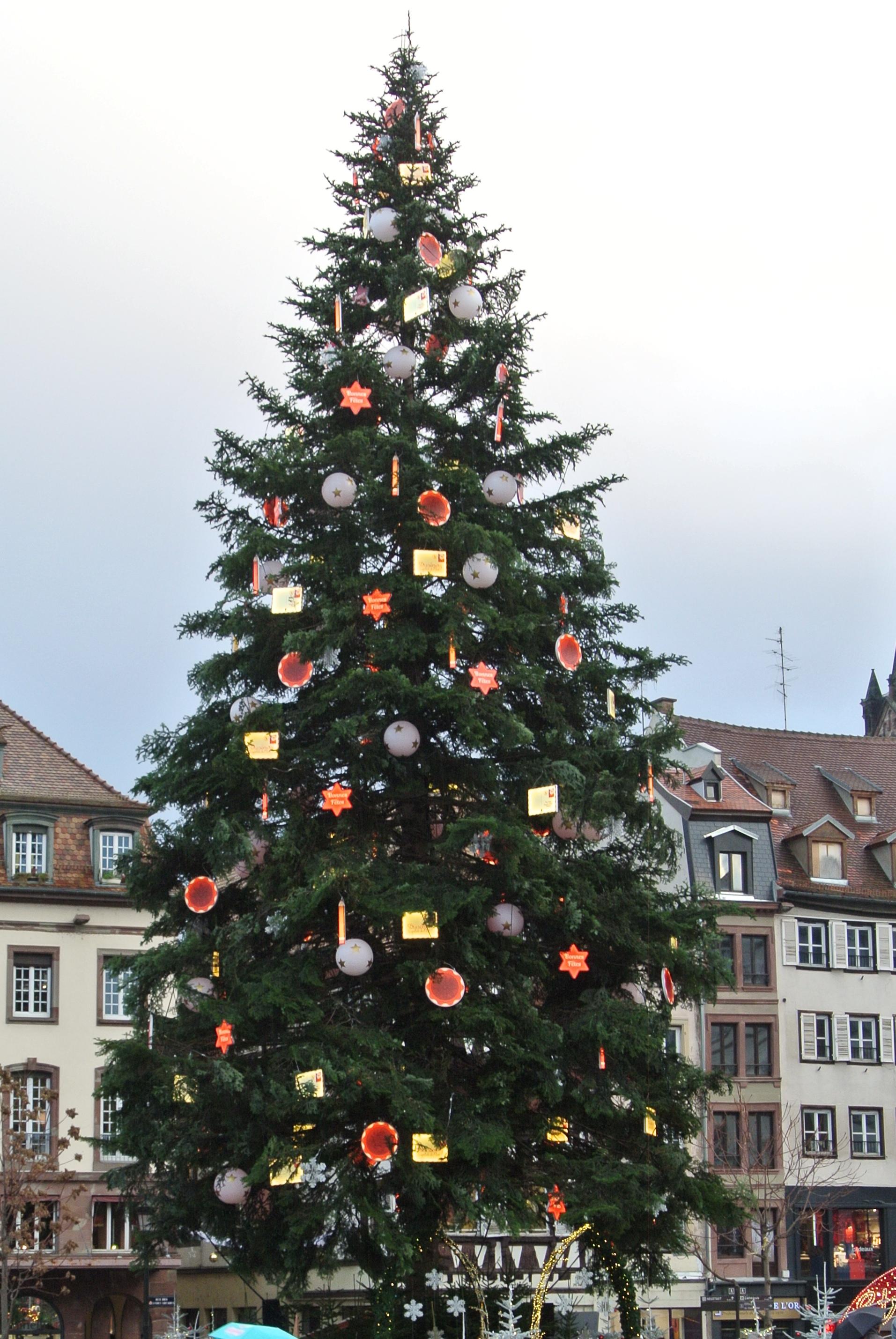 Grand Sapin De Noel File:Place Kléber   Le grand sapin de Noël.   Wikimedia Commons