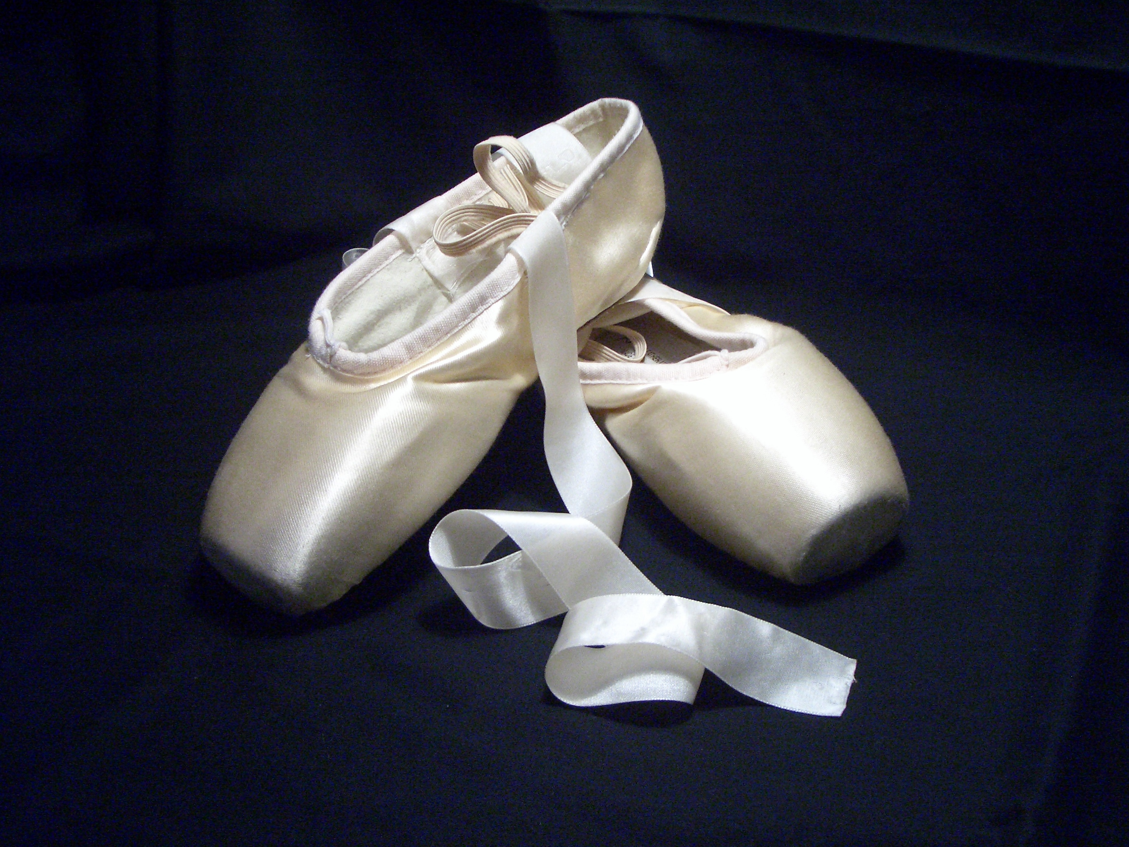 Bloch pointe shoes inside
