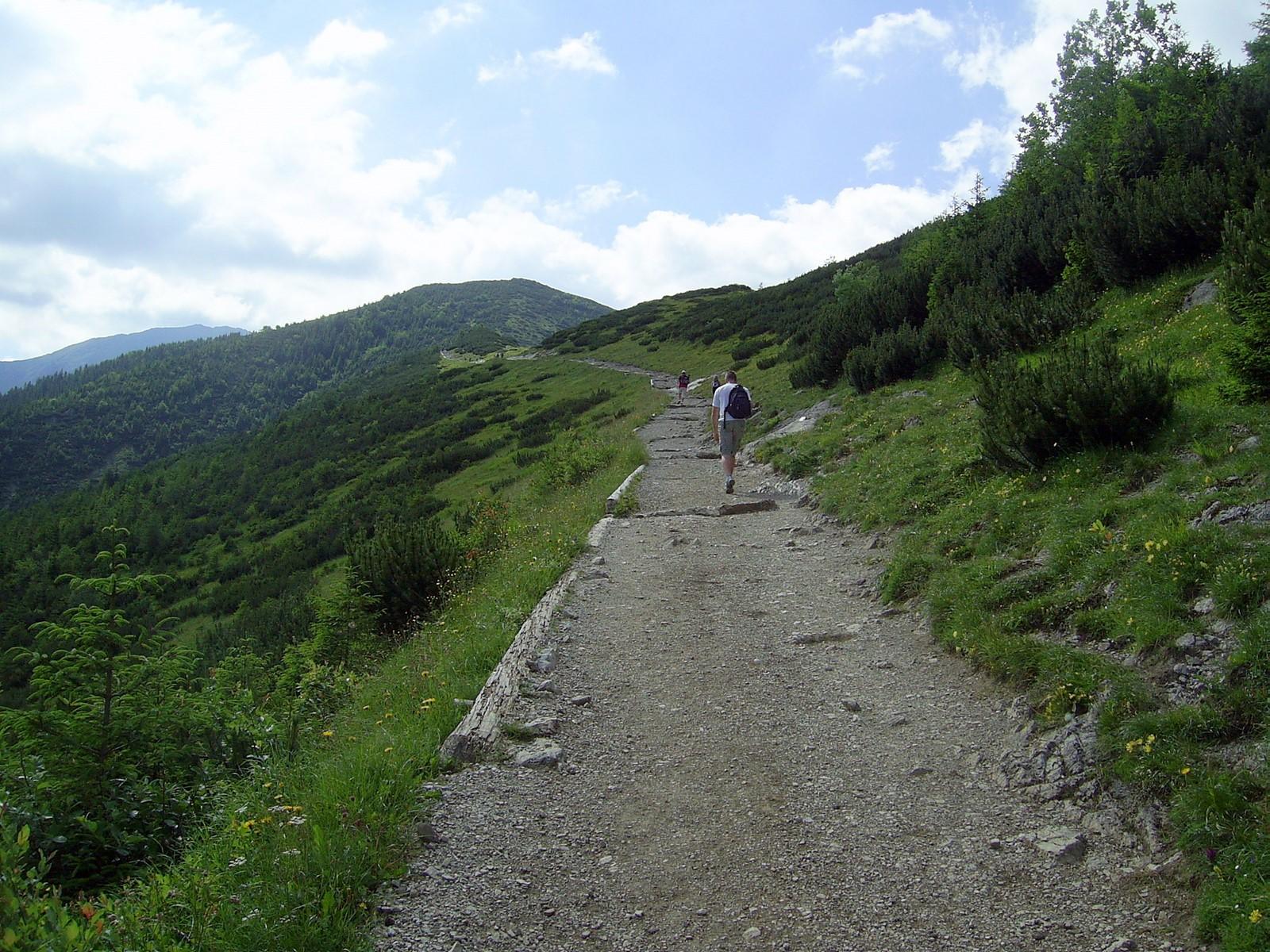Skupniów Upłaz, w drodze do ławeczek, fot. Krzysztof Dudzik, źródło: Wikimedia, GNU