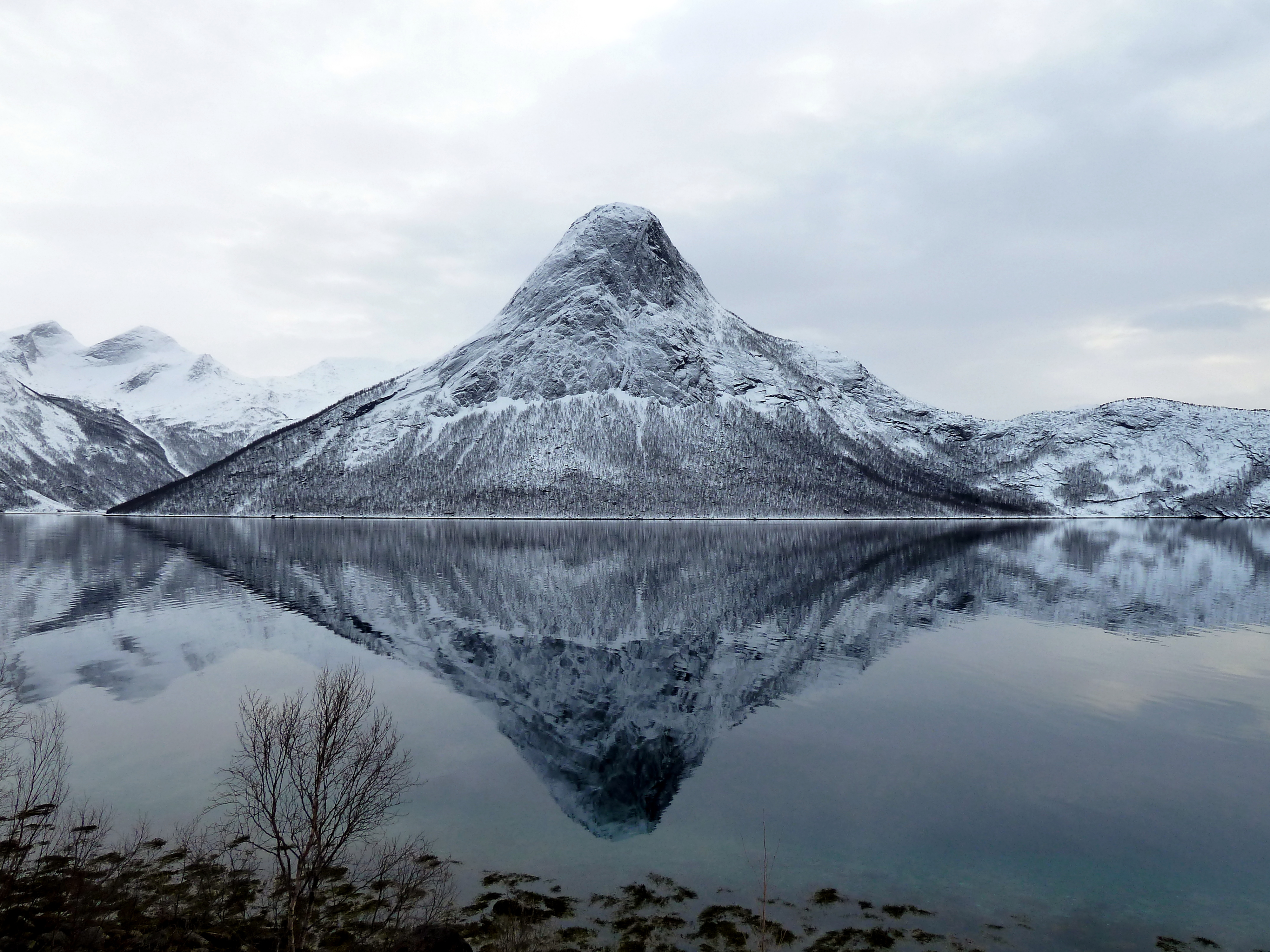 Tysfjord Norway  City new picture : Tysfjord Mulbukttinden og Tømmeråsfjorden Wikimedia ...