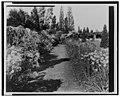 """""""Beacon Hill House,"""" Arthur Curtiss James house, Newport, Rhode Island. Blue Garden flower border LCCN00651326.jpg"""