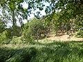 +20180611Müritz-Nationalpark.Feisneck See.-026.jpg