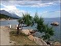 Брела - panoramio (17).jpg