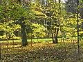 Гатчинский парк, октябрь. 02.jpg