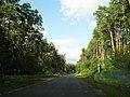 Дорога через заповідник Медобори.jpg