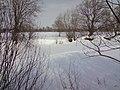 Замерзший став в селе Пески (Піски) - panoramio.jpg
