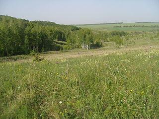 Borisovsky District District in Belgorod Oblast, Russia