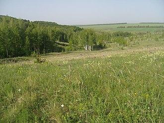 Borisovsky District - Scene in Belogorye Nature Reserve, in Borisovsky District