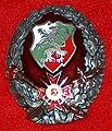 Нагръден знак Генерал-щабна академия аверс.JPG