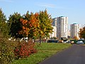 Осень в Зябликово. Вдалеке - дома Братеево - panoramio.jpg