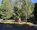 Пам'ятник Леніну, Парк Цукрозаводу.jpg