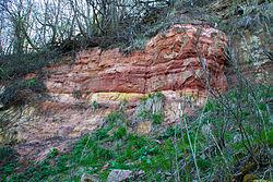 Песчаник около реки Тосна.jpg