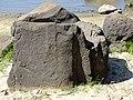 Петроглифы Сикачи-Аляна верхняя группа Круги на камне с человеком в полный рост.JPG