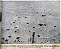 Природа и люди 2 Лунный пейзаж воронки от снарядов на фронте.jpg