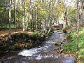 Река Мелдерупите, Иерики 2011 - panoramio.jpg