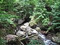 Річка біля с.Велика Уголька.JPG