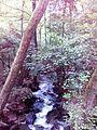 Смоларски водопад 13.jpg