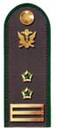 Советник ГГС РФ 2 класса ФССП.png