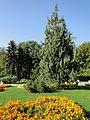 "София ""Южният Парк"" 07 October 2012 - panoramio (37).jpg"