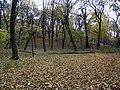 Украина, Киев - Голосеевский лес 77.jpg